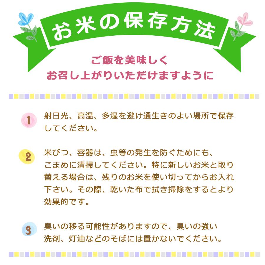 マスメディア紹介